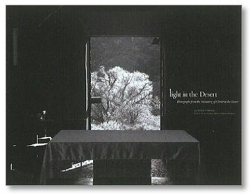 Light in DesertBook-OBrien