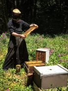 Fr Innocent inspecting a hive; notice the bees all around him... and his smile!